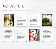 Great ET DailyNotes theme!